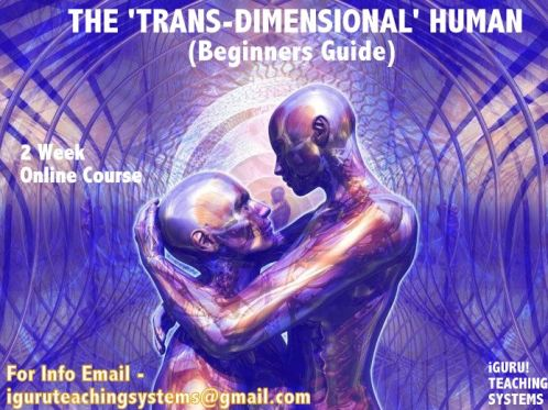 The Trans Dimensional Human Course Poster