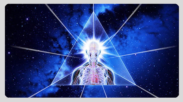 transdimensional human 3